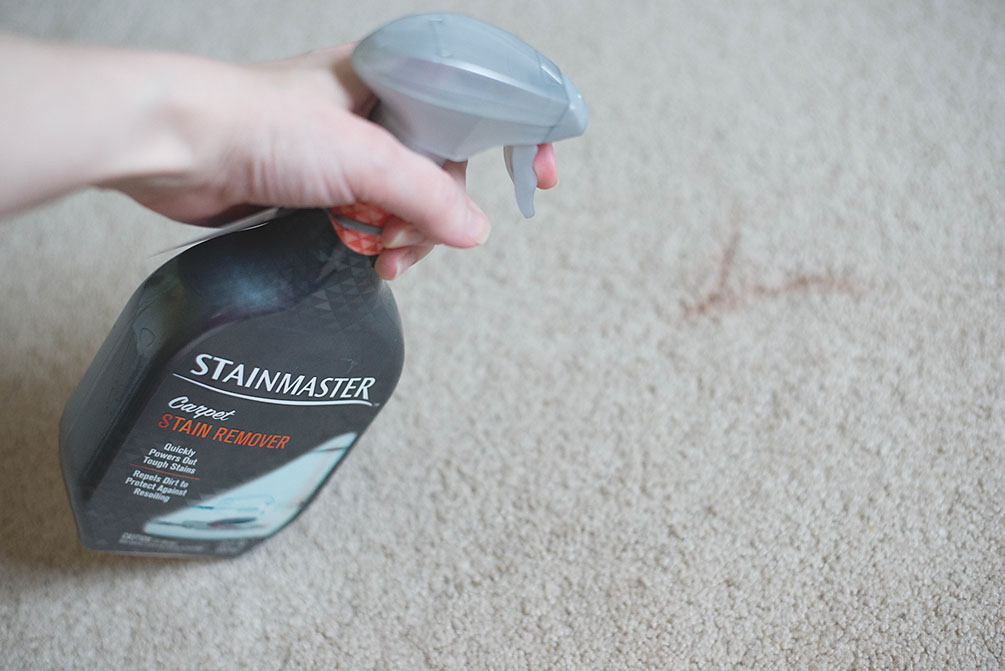 stainmaster3